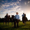working-cowboys039