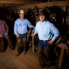 working-cowboys079